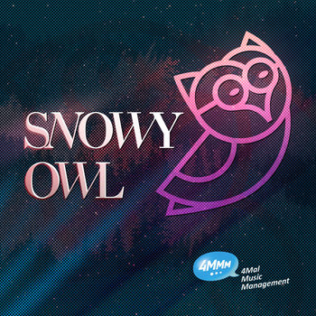 Owl Of Snow / No Ilusions