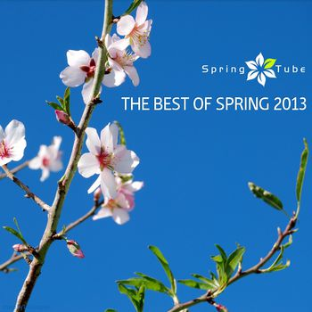 The Best of Spring 2013